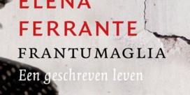 Losse flodders van Elena Ferrante