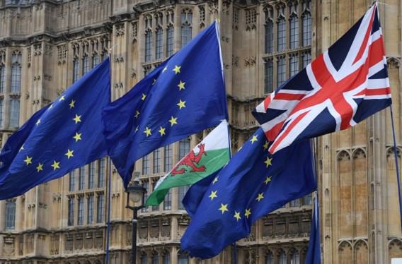 Uitstel Brexit enkel mogelijk 'onder strikte voorwaarden' voor EU