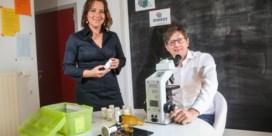 Limburgse app tovert smartphone om tot pollenmeter