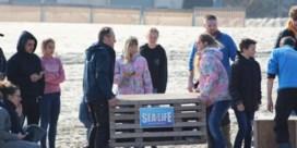 Laat de zeehond met rust (en de politie ook)