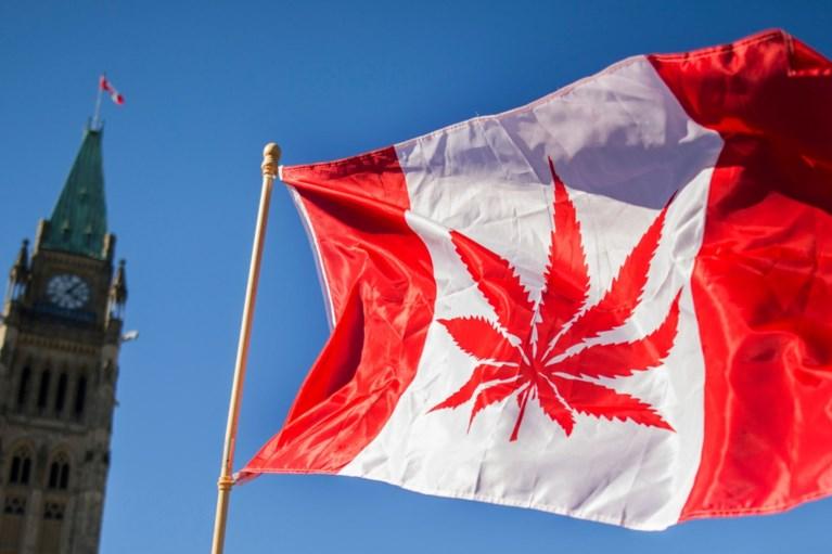 Legale Cannabis? Alleen de prijzen worden 'high'