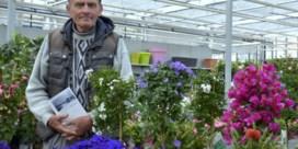 Laatste bloemenverkoper van Grote Markt blikt terug op familietraditie