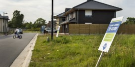 Vlaming zweert bij huis met tuintje