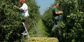 Het is nu officieel: boeren en tuinders zijn in crisis
