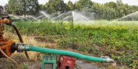'Afschakelplan' voor water op komst bij grote droogte