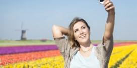 'Onoplettende toeristen maken Nederlandse bloemenvelden kapot'