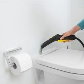 Wat zijn de beste manieren om bacteriën te verwijderen in huis?