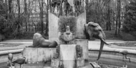 Jan Kempenaers fotografeert zwart verleden in zwart-wit
