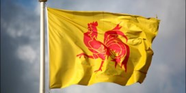 Drie experts over het achterophinkende Wallonië: 'Vlaanderen inhalen? Dat is een illusie'