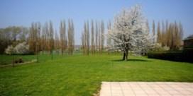 Vlaams bodemgebruik: beton wint, bos verliest