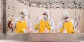 Oekraïense truc met kippenvleugel doet Europese boeren pijn