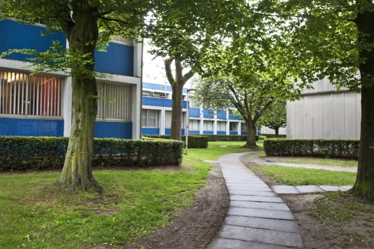 Omgebouwde koten Willy Van Der Meeren zijn Europees uithangbord voor circulaire renovatie