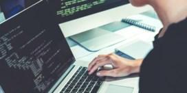 Tekort aan ICT'ers doet de economie steeds meer pijn