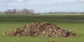 Als mest wegwerken duur wordt, lonkt de fraude