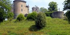 Opnieuw wijnproductie aan Kasteel Gaasbeek
