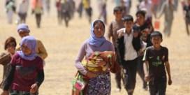 Jezidi's dagvaarden Duitsland over Syriëstrijders