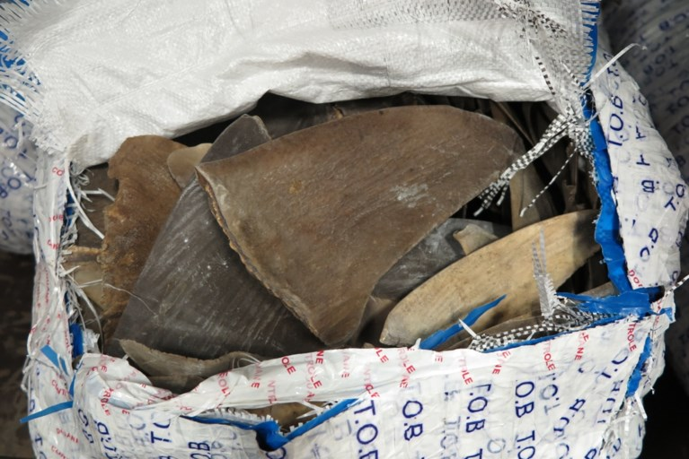 Douane neemt 1.200 kg vinnen in beslag