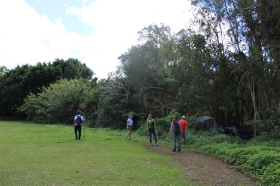 Speurhonden zoeken naar vermiste Belg in Byron Bay