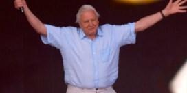 David Attenborough onthaald als rockster op Glastonbury Festival