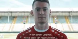Sander Coopman ruilt KV Oostende voor Antwerp (maar blijft nog even bij zwangere vrouw)