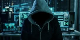 Trage formaties hinderen strijd tegen cybercrime