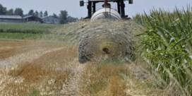 Eerste maatregelen wegens droogte: boeren mogen geen water oppompen