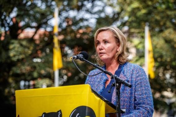 Vlaams minister-president Liesbeth Homans haalt artikel 35 van stal