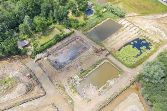 Weekendvijvers Herselt worden biodivers natuurgebied