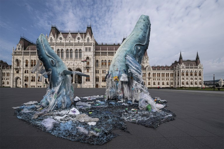 Walvissen duiken op aan Hongaars parlement
