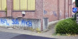 Vandalen laten spoor van graffiti achter in centrum Dworp