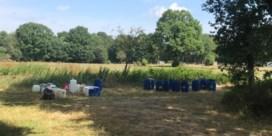 Tientallen vaten met chemisch afval gedumpt in Limburg