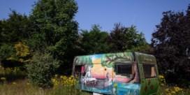 De allergezelligste kampeerwagen staat in Lokeren