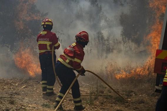 Portugal zet meer dan 700 brandweermannen in tegen bosbranden