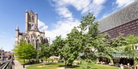 Zoveel bomen plant uw stad