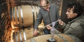 Belgische wijnproductie explodeert