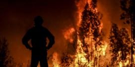 'Juli herschreef klimaatgeschiedenis'