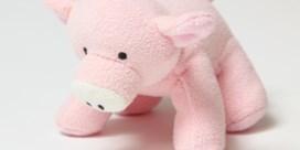 Verdacht pluchen varken ontmijnd in Elsene