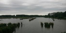 Grootste binnenmeer van Vlaanderen leeggepompt