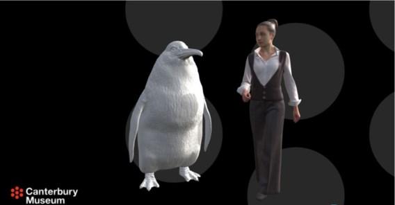 Fossielen van pinguïn gevonden die zo groot was als een mens