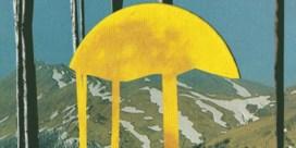 Pukkelpop: eerst de moshpit, dan een pintje, en dan kunst