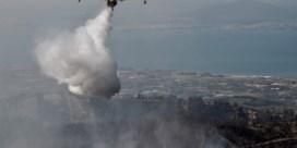 Bosbrand op Grieks eiland 'ecologische ramp'