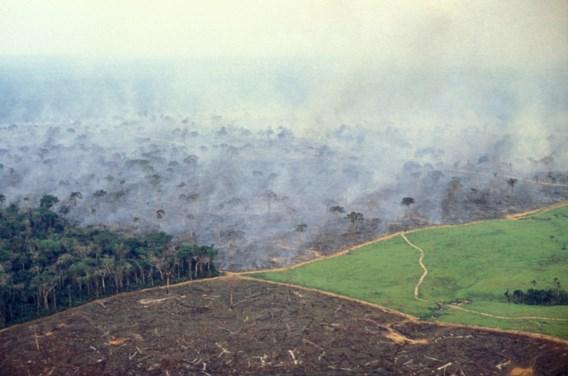 Bolsonaro boos nu ook Noorwegen donaties bevriest voor Amazonewoud
