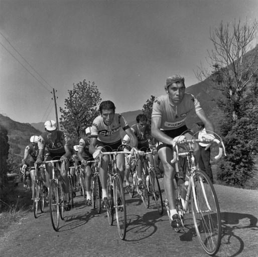 Voormalig Tourwinnaar Felice Gimondi overleden