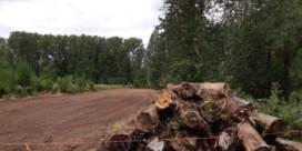 Historisch grasland in Geelstervallei vernield
