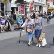 'De grootste groep Vlamingen past bij voor de steden'