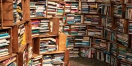 De boekencurator, weer zo'n gek idee van Gwyneth Paltrow