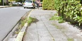Zo moet u zorgen voor uw stukje trottoir in uw gemeente