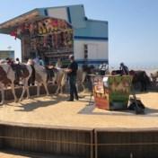 Protest tegen ponycarrousel op zeedijk Middelkerke