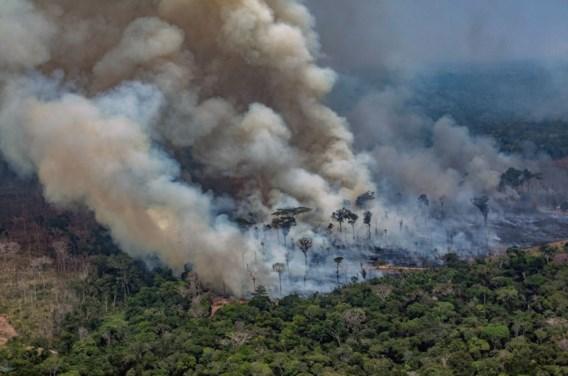 Brazilië weigert geld van G7 voor bosbranden in Amazonewoud
