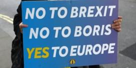 Opschorting Britse parlement: niet onwettelijk, wel ongezien